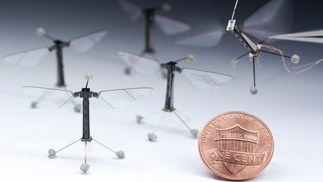 Robotic insect: World's smallest flying robot takes off