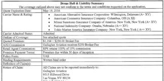 Drone Hull and Liability Summary